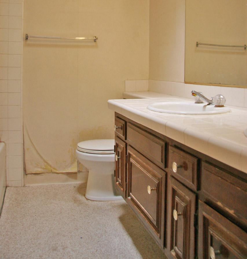 Santa Monica Kitchen and Bath Remodel (18th St)